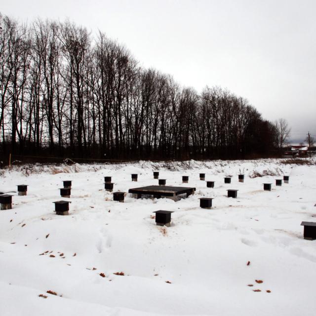 Железобетонные сваи в Приозерском районе